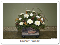Country Pickins'